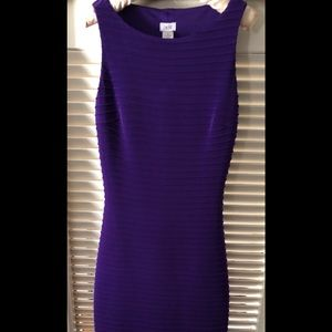 Cache, Size 2, figure flattering fitted dress.